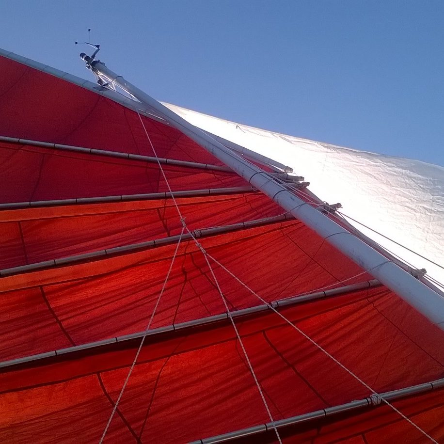 cambered sail junk rig